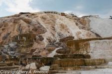 mammoth-hot-springs-33